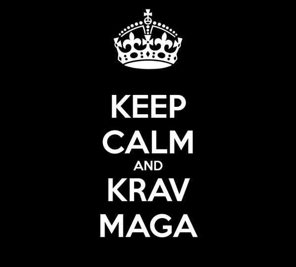 mixed-martial-arts-krav-maga