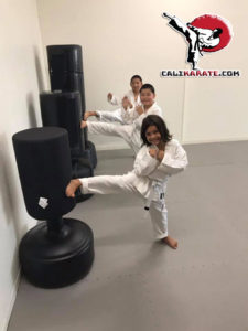 karate-kids-in-america-vista-ca
